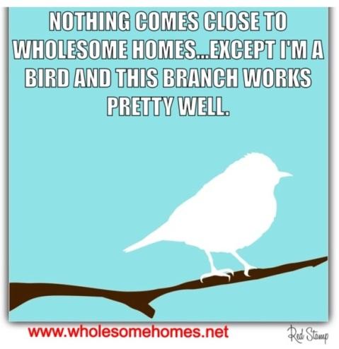 The Twitter Bird Knows Best